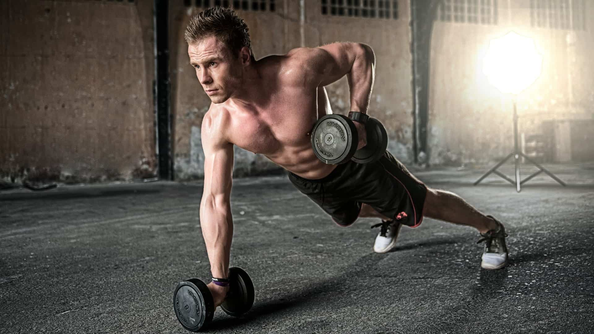 The Best Back Workout Routines For Fitness