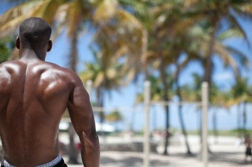 Back Workout Routine: Shape Your Back