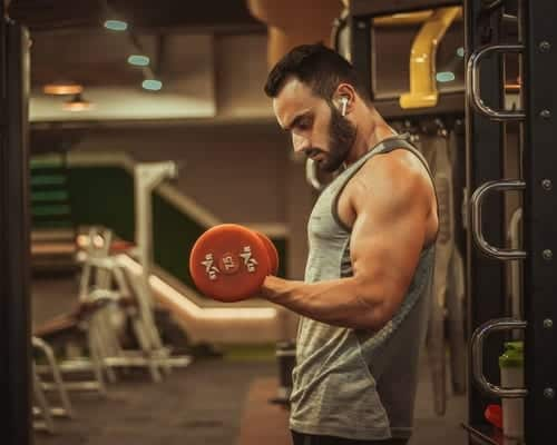 Effective Workout For Muscle Building